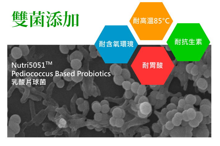 Nutri5051Pediococcus Based Probiotics乳酸片球菌